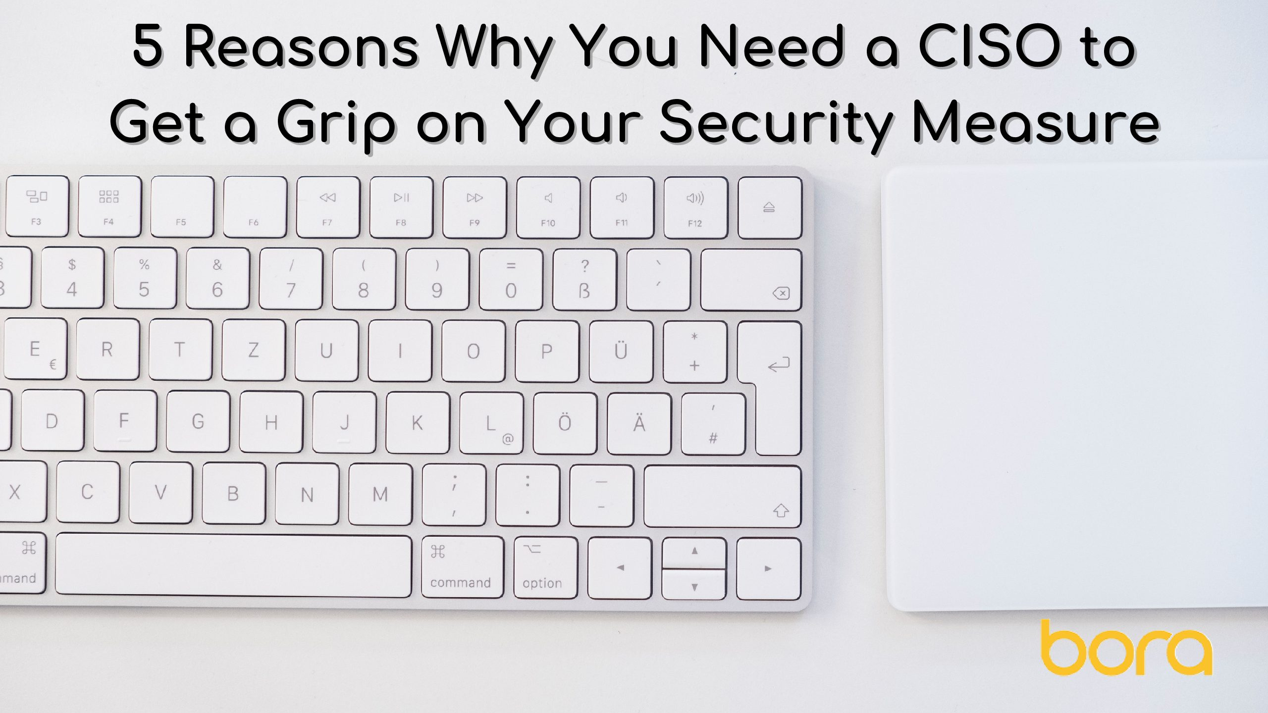 5 Reasons Why You Need a CISO to Get a Grip on Your Security Measure